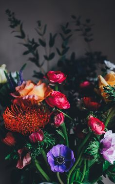 Download free at unsplash.com .... love the dark background with these beautiful jewel tones.