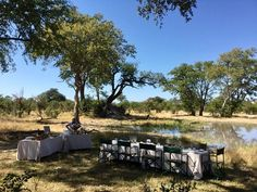 May is the ideal time for a scrumptious bush picnic at Savuti Camp. clear skies, not too chilly yet and there is still a good amount of water about. Africa Travel, Us Travel, Clear Sky, Outdoor Furniture Sets, Outdoor Decor, Bon Appetit, Wilderness, Safari, Picnic