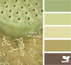 flora detail