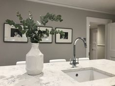 Like the colour of the Walls Cornforth White as the colour for splashbacks Grey Cupboards, Paint For Kitchen Walls, Kitchen Wall Colors, Grey Kitchen Cabinets, Kitchen Wall Design, Grey Kitchens, Luxury Kitchens, Cool Kitchens, Tuscan Kitchens