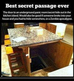 Secret door for my house