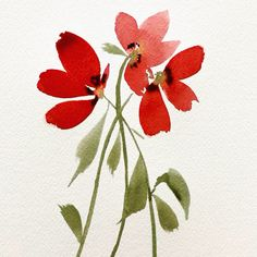 Loose floral poppy watercolour red flower florals process summer flower how to paint art flores acuarela Watercolor Poppies Watercolor Flowers Tutorial, Watercolor Poppies, Watercolour Tutorials, Watercolor Cards, Watercolor Landscape, Watercolor Animals, Watercolor Background, Abstract Watercolor, Watercolor Illustration
