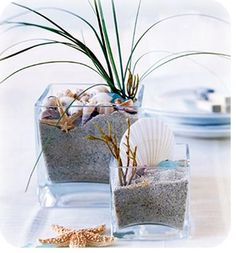 Google Image Result for http://beach-theme-wedding-ideas.com/wp-content/uploads/2010/11/beachsand_shells-centerpiece1.jpg