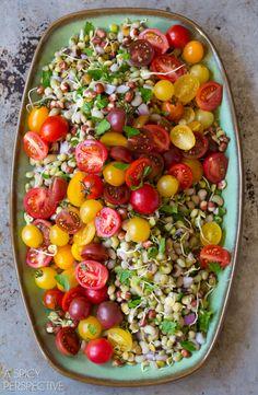 Gorgeous Market Bean