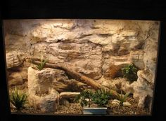 creative desert reptile habitats - Google Search