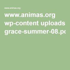 www.animas.org wp-content uploads grace-summer-08.pdf