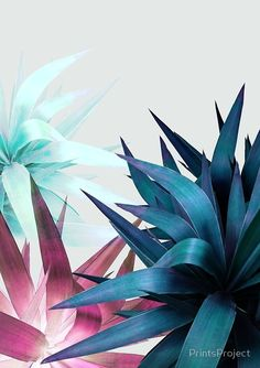 'Plant Leaves, Tropical Plant, Foliage' Poster by PrintsProject Plant Wallpaper, Flower Wallpaper, Nature Wallpaper, Room Wallpaper, Textured Wallpaper, Tropical Art, Tropical Leaves, Yoga Kunst, Plant Texture