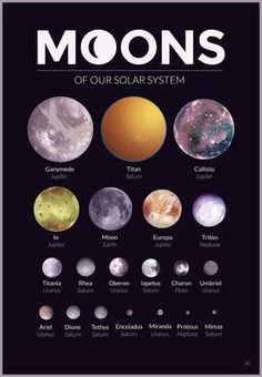 Moons of our Solar System – A gallery-quality graphic design art print by Alexandria Neonakis for sale. Moons of our Solar System – A gallery-quality graphic design art print by Alexandria Neonakis for sale. Cosmos, Space Planets, Space And Astronomy, Hubble Space, Space Telescope, Space Shuttle, Science Experience, Astronomy Facts, Astronomy Quotes