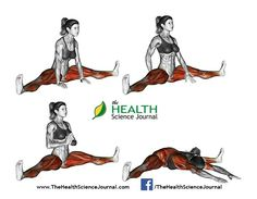 All About Abs – 66 Exercises in Pictures! Bodybuilding, Calisthenics & Yoga (Part - Page 4 of 4 - The Health Science Journal - Grand Fitness Yoga Abs, Yoga Pilates, Yoga Muscles, Best Ab Workout, Abs Workout For Women, Workout Tips, Mens Fitness, Fitness Tips, Fitness Del Yoga