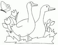 white_geese Adult coloring pages Bird Drawings, Colorful Drawings, Animal Drawings, Machine Embroidery Designs, Embroidery Patterns, Hand Embroidery, Coloring Pages To Print, Coloring Book Pages, Western Theme