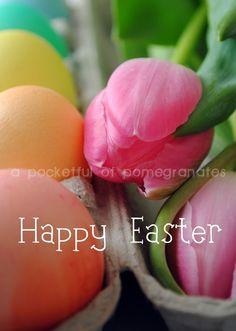 """Easter Eggs 1"".  (www.etsy.com/shop/apocketfulofphotos)"