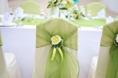 New wedding backdrop ceremony chairs Ideas Green Wedding Decorations, Pink Wedding Theme, Wedding Sash, Wedding Themes, Wedding Flowers, Wedding Ceremony Chairs, Wedding Backdrops, Lime Green Weddings, Wedding Planning