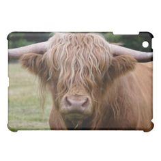 Highland Cle calf, near Dufftown, Case For The iPad Mini Scottish Animals, Scottish Highland Cow, Highland Cattle, Scottish Highlands, Highland Cow Gifts, Cows, Ipad Mini, Wall Art Prints, Scotland