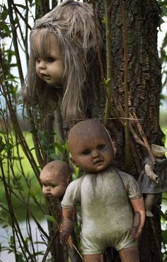 The Island of the Dolls, Mexico   - Explore the World with Travel Nerd Nici, one Country at a Time. http://TravelNerdNici.com