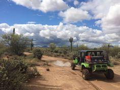 Adventure Activities, Travel Activities, Arizona Day Trips, Palm Resort, Green Zebra, Phoenix Arizona, Family Adventure, Grand Canyon, Monster Trucks