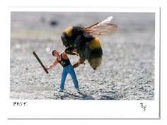 Bee attack Slinkachu