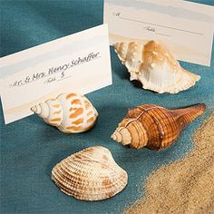 shell name-card holders