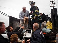 Animal rescuers are working hard to save pets who were stranded or abandoned during Hurricane Sandy.  How can you help? http://www.people.com/people/tablet/article/0,,20643887,00.html