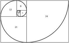 La sucesión de Fibonacci es una serie infinita de números naturales que representada en forma geométrica nos da esta forma de espiral. A menudo la podemos encontrar en la naturaleza, como en las cáscaras de los caracoles o en la distribución de las ramas de los árboles. Realmente fascinante.