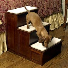 My little Bean might need this someday! | Dachshund using doggie stairs | Mr. Herzher's 3-Step Decorative Pet Steps
