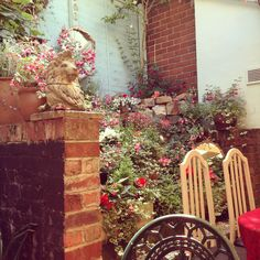 Cafe garden in full bloom.