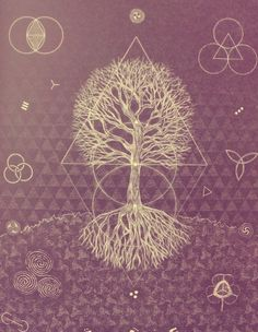 Quadrivium, Sacred Geometry, Magic, Esoteric Philosophies,  the design of divine Natural Beauty / Sacred Geometry <3