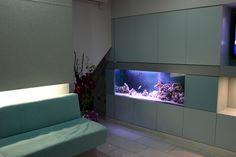 Aquarium in a Dental Practice waiting room designed and installed by Aquatic Gems Ltd.  www.aquaticgems.co.uk