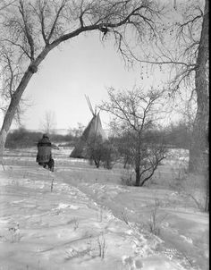 Woman wood gatherer. Indian woman carrying armful of wood in the snow. Date Original: 1902-1933. Richard Throssel Collection, American Heritage Center, University of Wyoming.