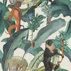 Mind the Gap Bermuda Behang Jungle Aapjes Behang - Luxury By Nature Eclectic Wallpaper, Lit Wallpaper, Modern Wallpaper, Wallpaper Samples, Wallpaper Online, Pattern Wallpaper, Tropical Wallpaper, Green Wallpaper, Monkey Wallpaper