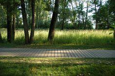 landscape35mm:  feyssine park // ilex paysage urbanisme