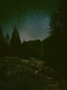 Theres nothing better than star gazing on a summers' night