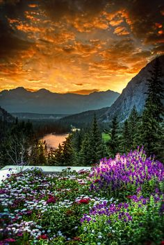 Sunrise photo over the Bow Valley from patio of the Banff Springs Hotel, Canada