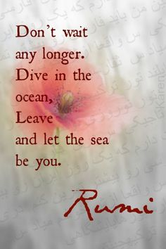 """Rumi - """"Don't wait any longer.Dive in the ocean,Leave and let the sea be you."""""""