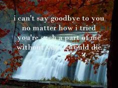 I can't say goodbye to you by Helen Reddy with Lyrics