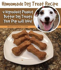 Easy Recipe for Homemade Peanut Butter Dog Treats - Big DIY IDeas