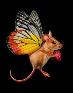 Unique Paintings Tiny Mouse With Butterfly Wings by Lisa Ericson 809x1024 Hyperrealistic Paintings Tiny Mouse With Butterfly Wings by Lisa Ericson
