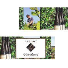 Markus Brandt, Winemaker, Germany Rheinhessen