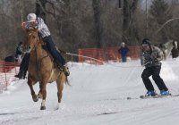 My Skis Have Horsepower: Skijoring in Idaho | Sun Valley Magazine #skijoring #wintersports