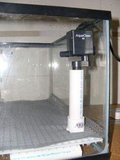 Do It Yourself (DIY) Undergravel Filter (UGF) Plans for a Saltwater Aquarium