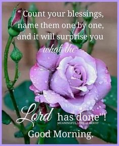 Blessed Sunday Morning, Daily Morning Prayer, Good Morning Sister, Good Morning God Quotes, Good Morning Prayer, Morning Inspirational Quotes, Morning Greetings Quotes, Morning Blessings, Good Morning Messages
