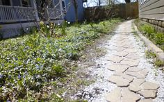 Flagstone pathway by Property Serv.