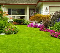 100 Best Beautiful Lawns Images Lawn Beautiful Lawn Care Tips