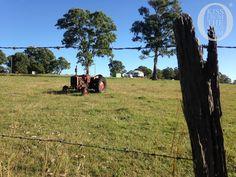 #Exploring the #MaryValley #Queensland in Australia - courtesy of @kissfromtheworld www.parkmyvan.com.au #ParkMyVan #Australia #Travel #RoadTrip #Backpacking #VanHire #CaravanHire