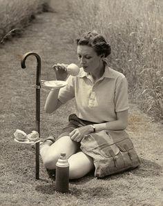 English walking stick picnic