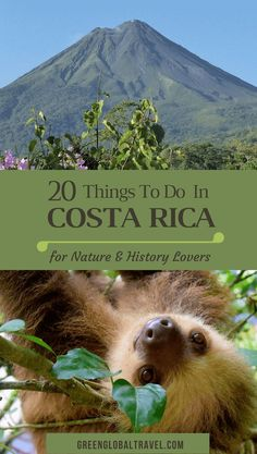 Top 20 Things to Do In Costa Rica (For Nature & History Lovers), including Arenal Volcano, Caño Negro Wildlife Refuge, Corcovado National Park, Manuel Antonio National Park, Monteverde Cloud Forest, Playa Montezuma, mysterious stone spheres, Tabacón Hot Springs, Tortuguero National Park, and much more.
