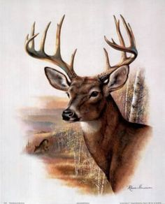 Whitetail Buck Deer Antler Rack And Doe Animal Wildlife Wall Picture Art Print: A high-quality home decor wall picture which represents the best of both worlds: quality and affordability. Deer Photos, Deer Pictures, Animal Paintings, Animal Drawings, Deer Paintings, Drawing Animals, Wildlife Paintings, Watercolour Paintings, Watercolor