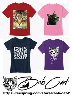 Bob Cats Bob is a crazy Cat with half a tail - Bobcat Pictures, Cat Shots, Funny Mems, All About Cats, Cat 2, Beautiful Cats, Crazy Cats, Funny Shirts, Cute Cats