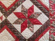 https://flic.kr/p/9uHeDs   Sampler   Pieced by Sarah Shelton Quilted by Jessica's Quilting Studio