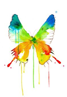 butterfly in watercolor, great tones