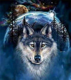 beautiful wolf and moon pictures Wolf Photos, Wolf Pictures, Beautiful Wolves, Animals Beautiful, Wolf Background, Tier Wolf, Indian Wolf, Native American Wolf, Wolf Artwork